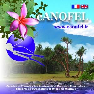 eanofel